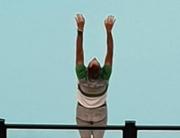 ron_new_yoga_car